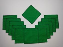 A set of 12 polishing cloths - different colors - green